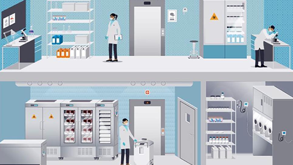 Hospital Temperature Monitoring Medical Temperature
