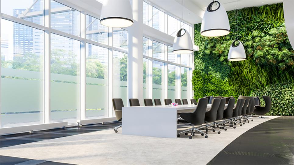 Green wall of plants in the office