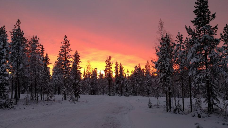 Winter sunrise in Lapland, Finland